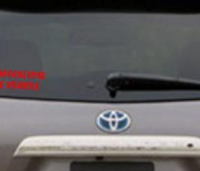 Zombie Apocalypse Car Decal